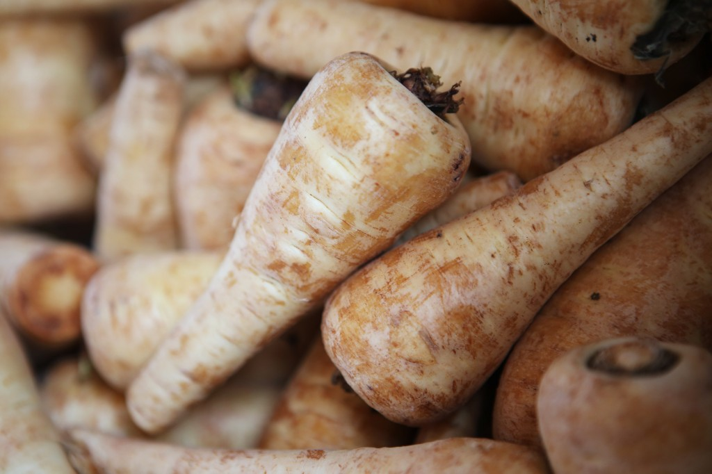 Parsnips for parsnip puree