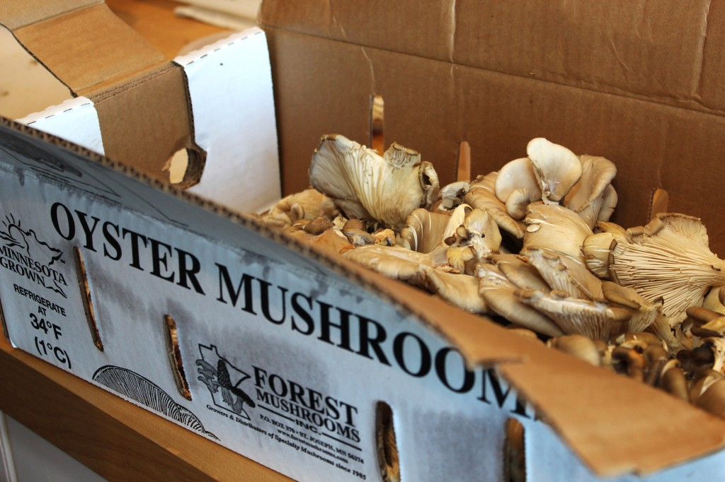 Wild oyster mushrooms for soup
