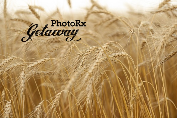 IMG_1309-58 photorx getaway
