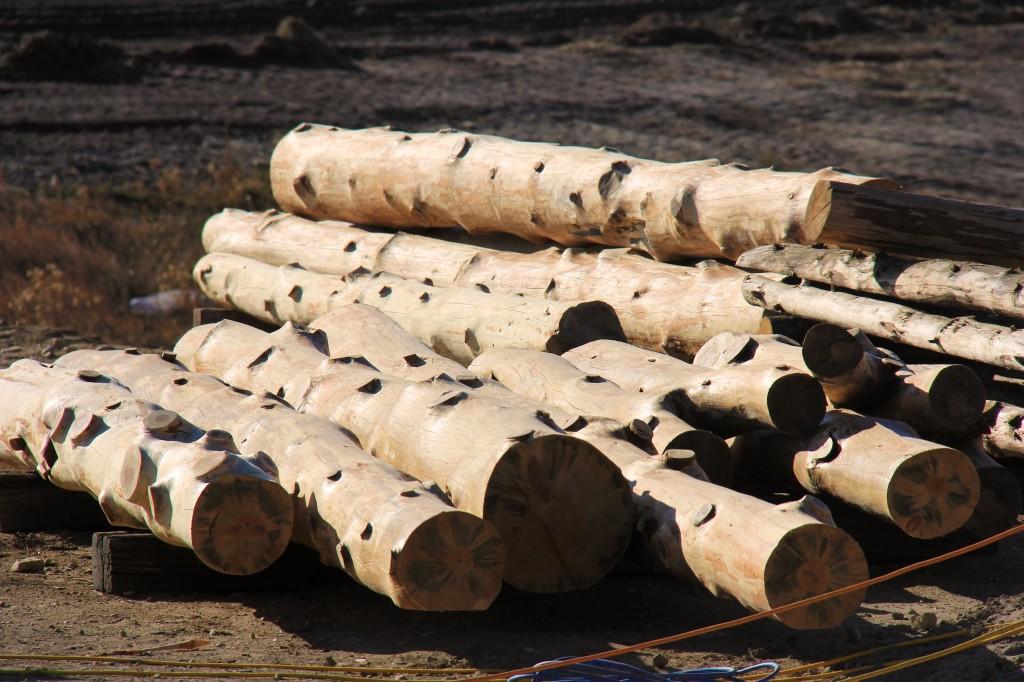Truss Logs