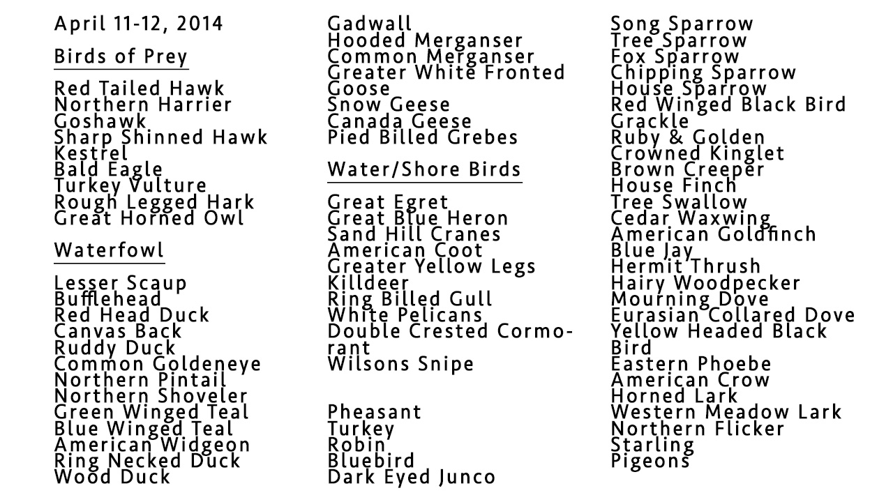 List of Birds 2014